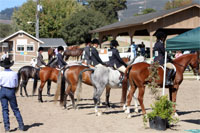 Competitor at A show
