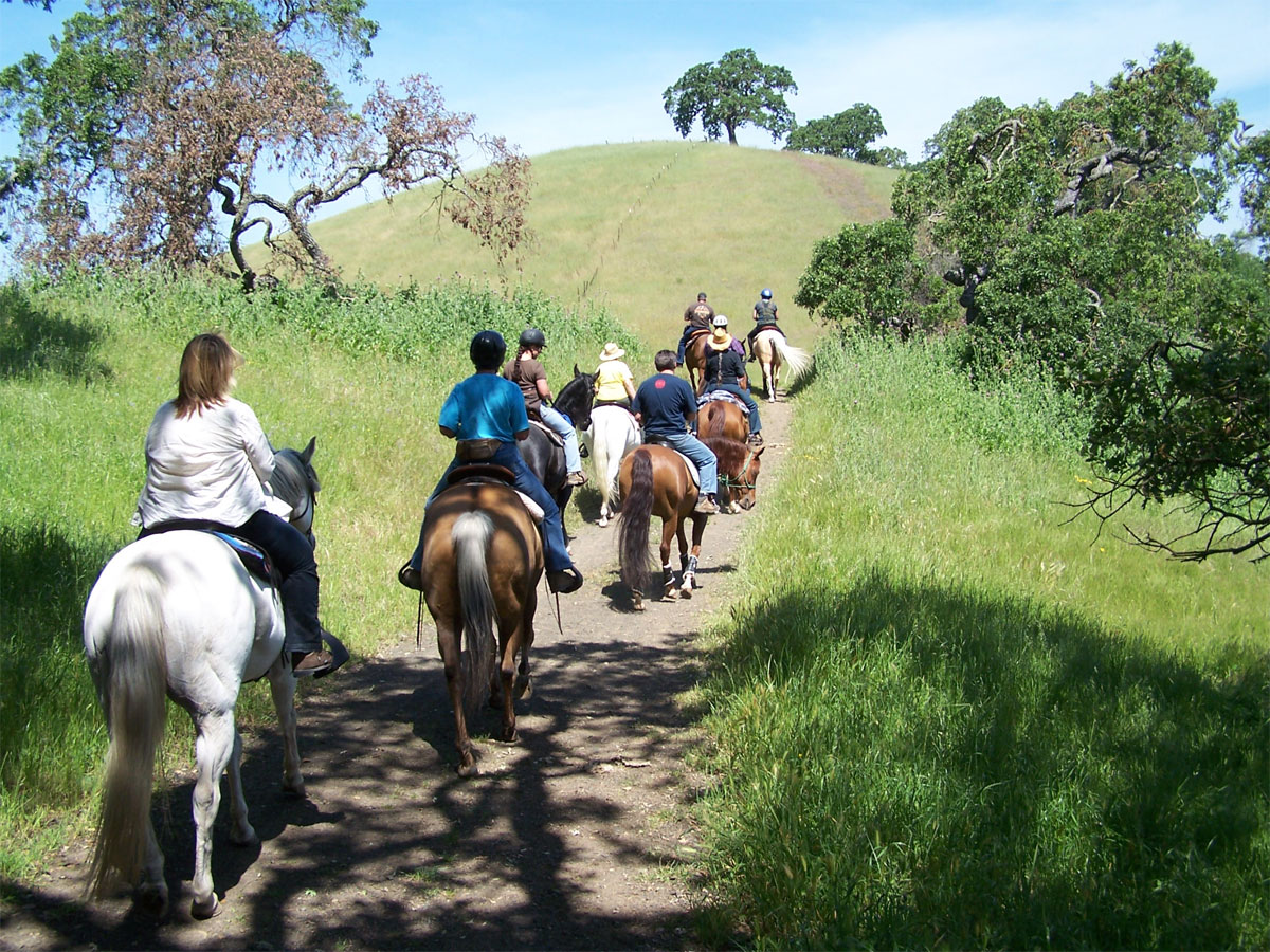 Trail Ride at Mendoza